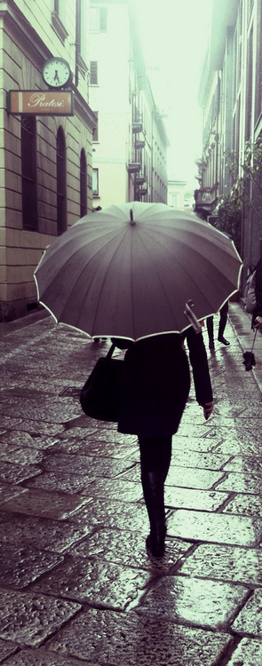 Gray Umbrella
